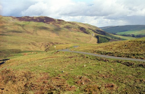 the 'Bottom Swire' road, Ettrick Valley